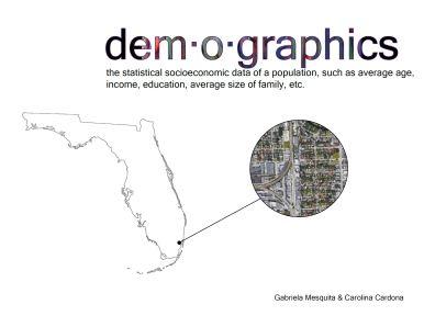 demographics cover