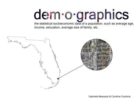 demographics cover